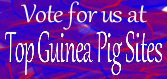 Top Guinea Pig Sites